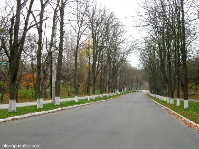 корсунь-шевченківський путівник україна фото 2