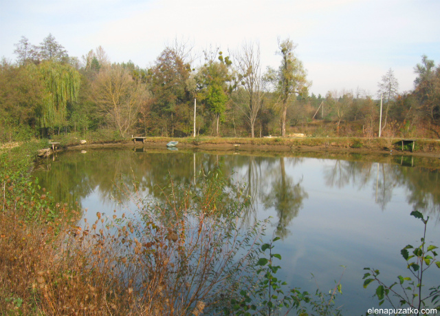 фішинг парк рибалка богуслав фото 15