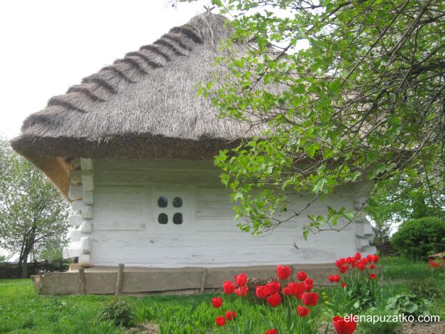 батьківщина тараса шевченка моринці шевченкове україна фото 36