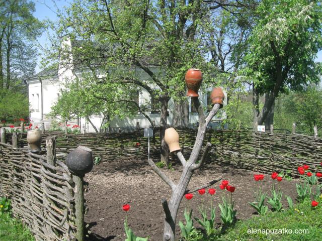 батьківщина тараса шевченка моринці шевченкове україна фото 5