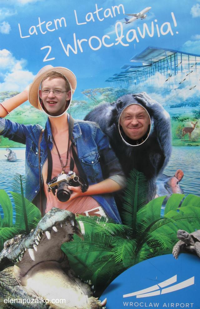 вроцлавський зоопарк фото 1