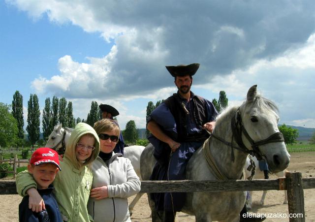 кінне шоу будапешт угорщина фото 5