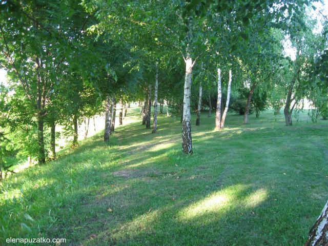 зелений туризм садиба синиця богуслав україна фото 30