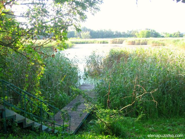 зелений туризм садиба синиця богуслав україна фото 29