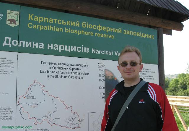 долина нарцисів закарпаття хуст україна фото 2