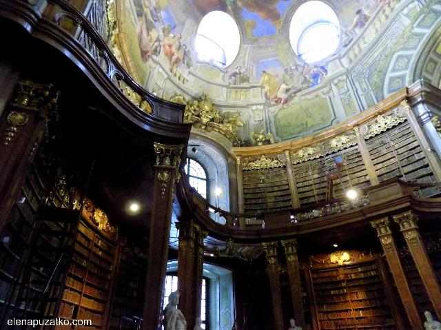 відень бібліотека фото 3
