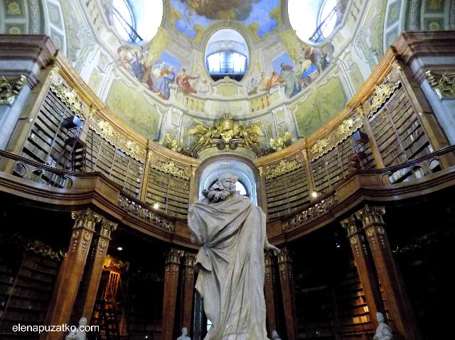 відень бібліотека фото 4