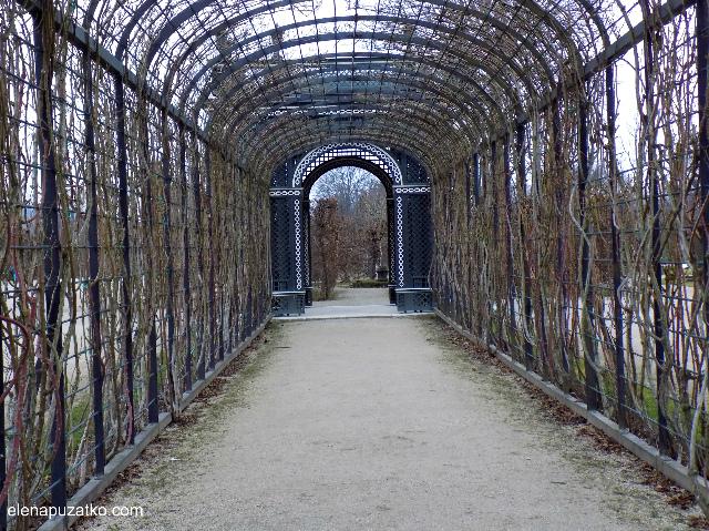 відень палац шенбрунн фото 10