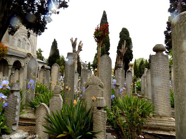 мечеть сулейманіє стамбул фото 13