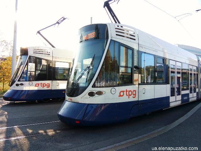 громадський транспорт женева фото 2