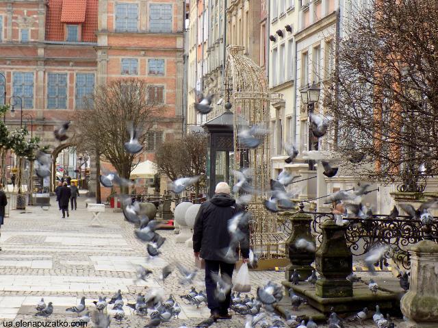 гданськ відпочинок польща фото 21
