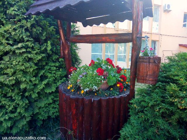 санаторій теплиця виноградів україна фото 27