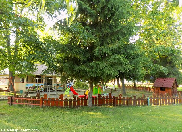 санаторій теплиця виноградів україна фото 30