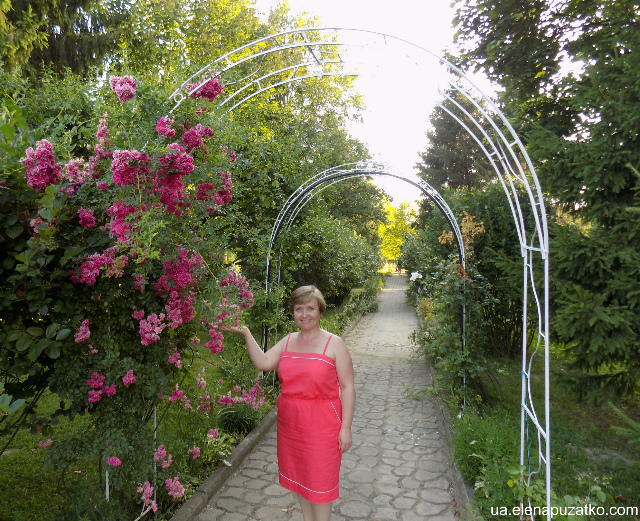 санаторій теплиця виноградів україна фото 28