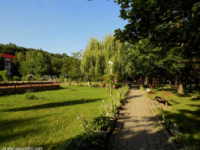 санаторій теплиця виноградів україна фото 25