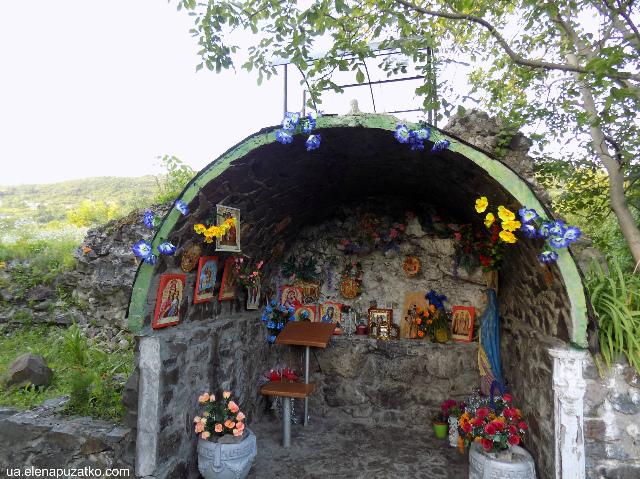 виноградів україна фото 16