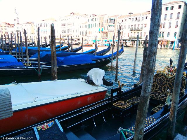 венеція громадський транспорт фото 6