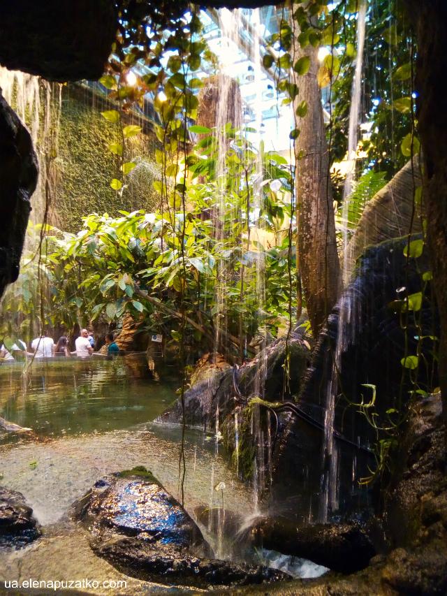 аквариум флория стамбул фото -10