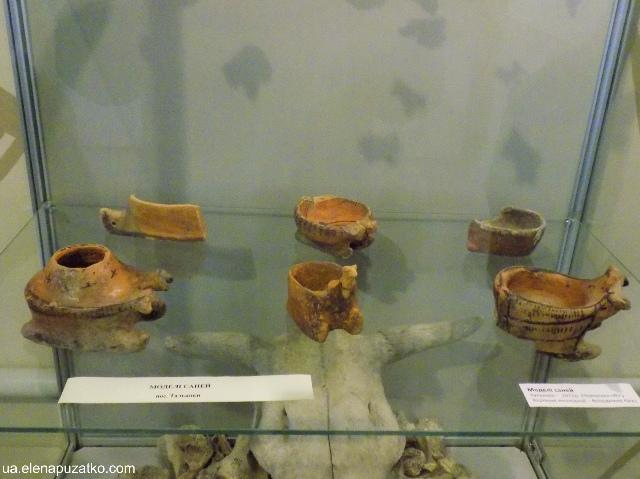 музей трипільської культури легедзине фото-14