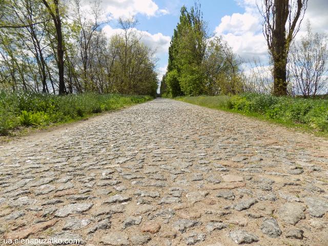 стеблів дорога фото 1
