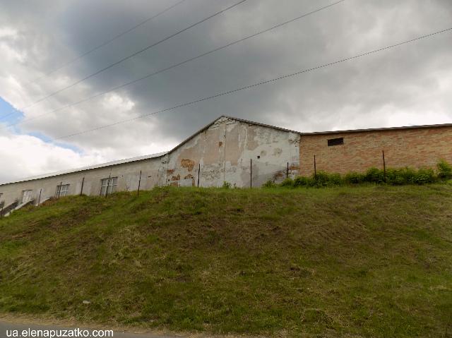 стеблів фабрика фото 20