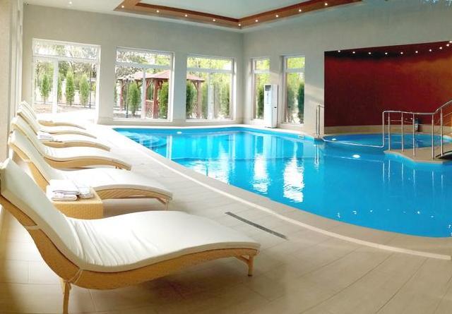закарпаття готелі з басейном фото -11