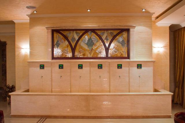 готелі закарпаття з термальними басейнами фото 6