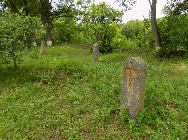 вільховець успенська церква богуславський район фото 10