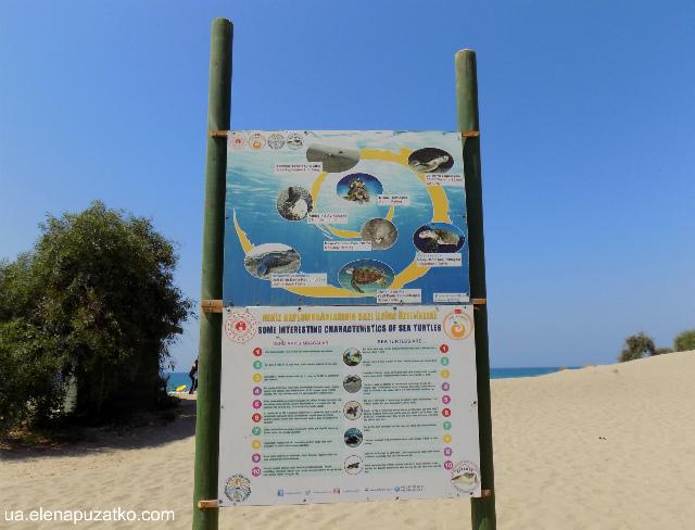 патара пляж фото 12