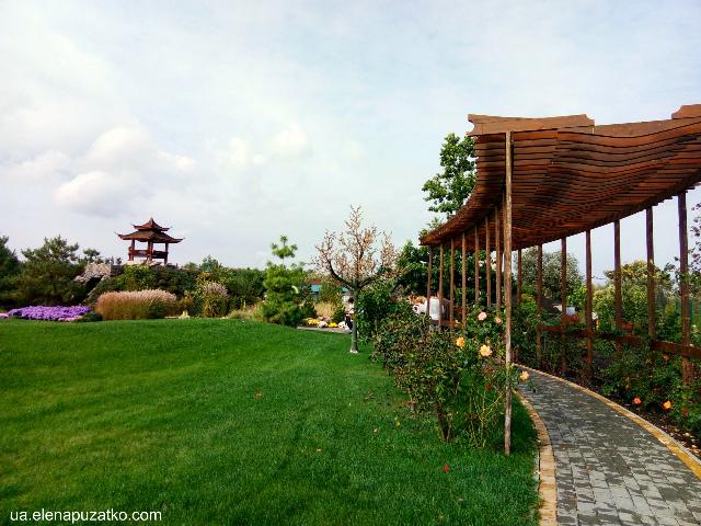 парк острів сакури володарка фото 22