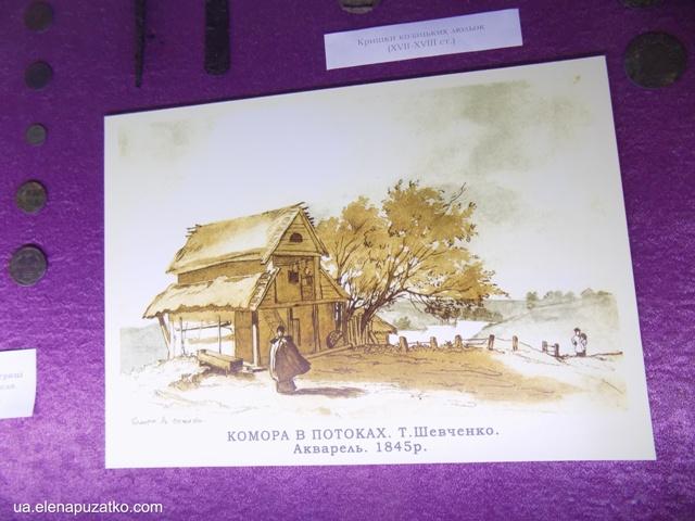 миронівка музей фото 5