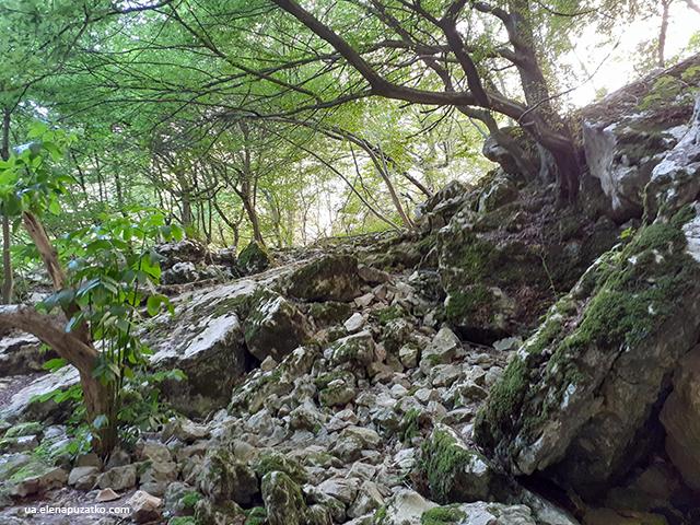 печера проходна болгарія фото 23